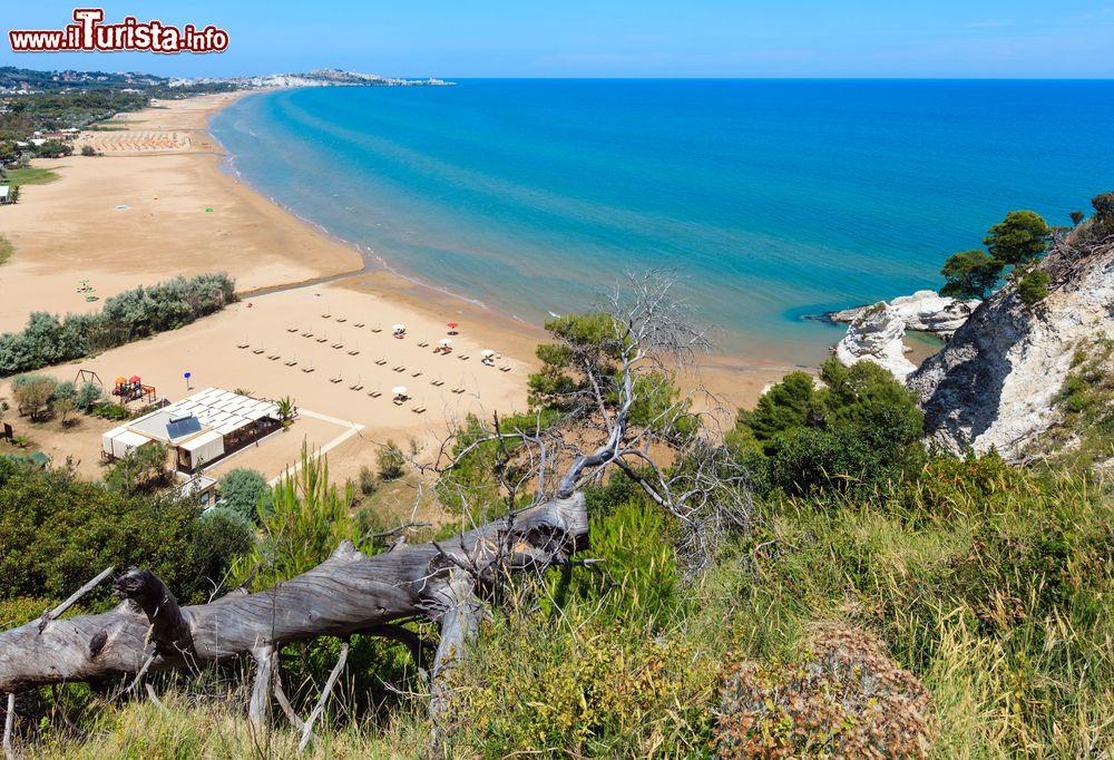 Le foto di cosa vedere e visitare a Puglia