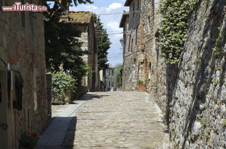 Le foto di cosa vedere e visitare a Monteriggioni