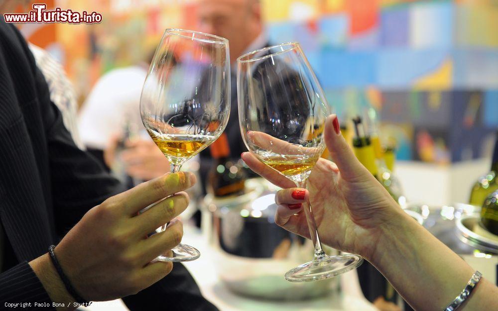 Vinitaly, Salone Internazionale del vino e dei distillati Verona