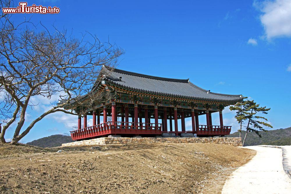 Le foto di cosa vedere e visitare a Boryeong