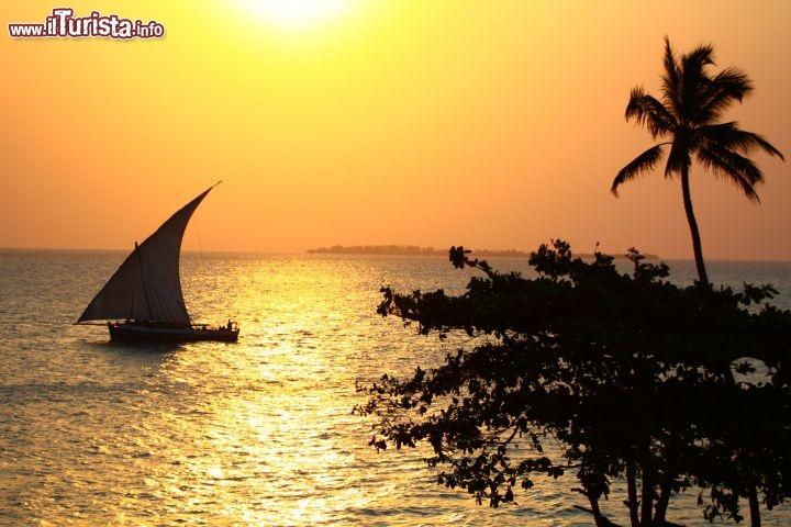 Le foto di cosa vedere e visitare a Tanzania
