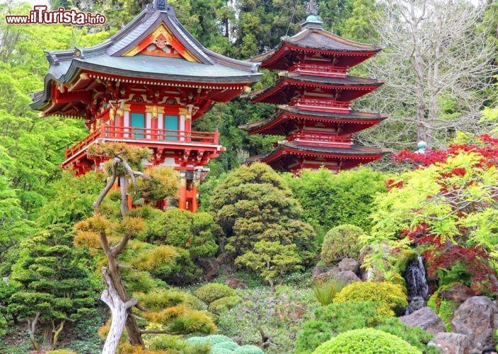 Giardino giapponese san francisco expo 1894 gli for Elementi da giardino