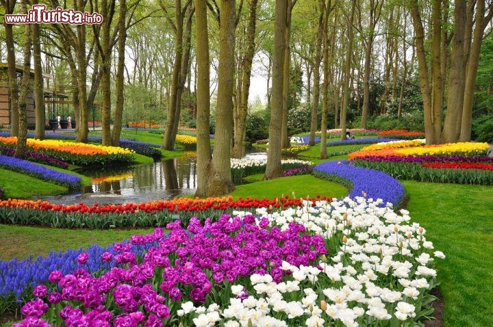 Parco Keukenhof, in Olanda per ammirare la fioritura dei tulipani | Guida e foto