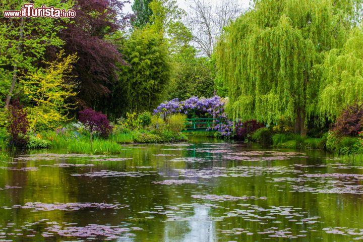 Il giardino d 39 acqua di casa monet a giverny foto giverny casa di monet - Giardino d acqua ...