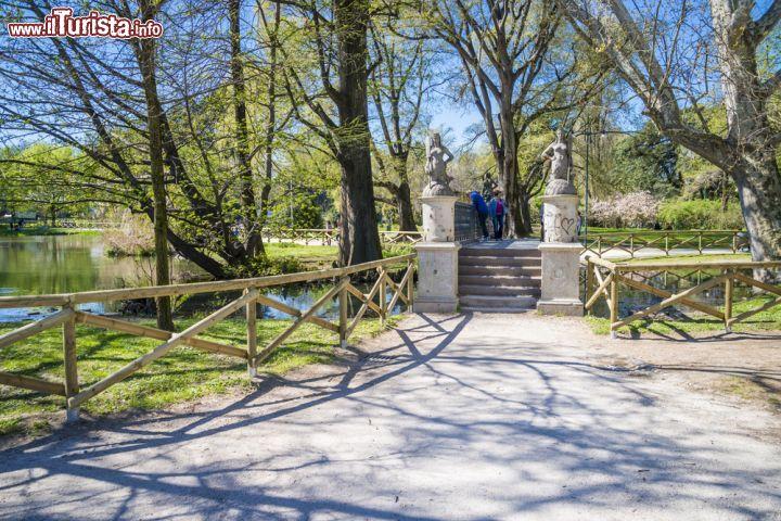 Il laghetto all 39 interno del parco sempione foto for Laghetto da interno