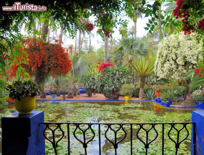 Giardini di majorelle marrakech cosa vedere guida alla for Giardino di ninfa cosa vedere