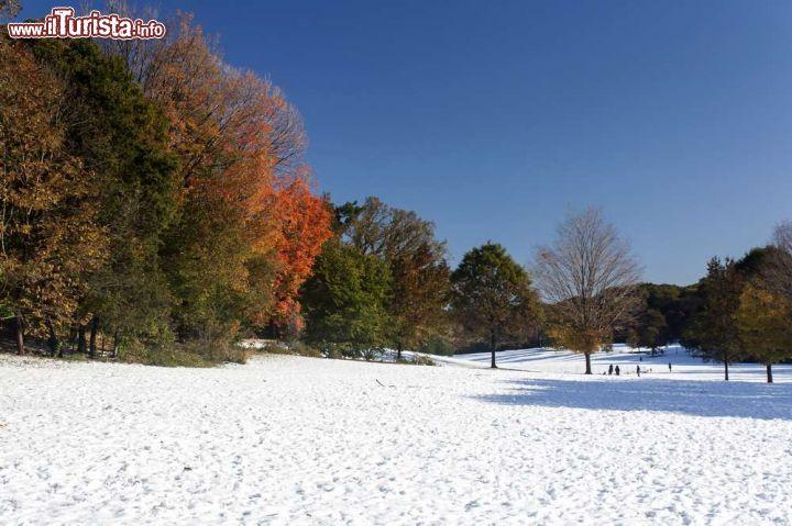 Neve a prospect park questo parco pubblico di foto new york city prospect park for Prospect park lefferts gardens