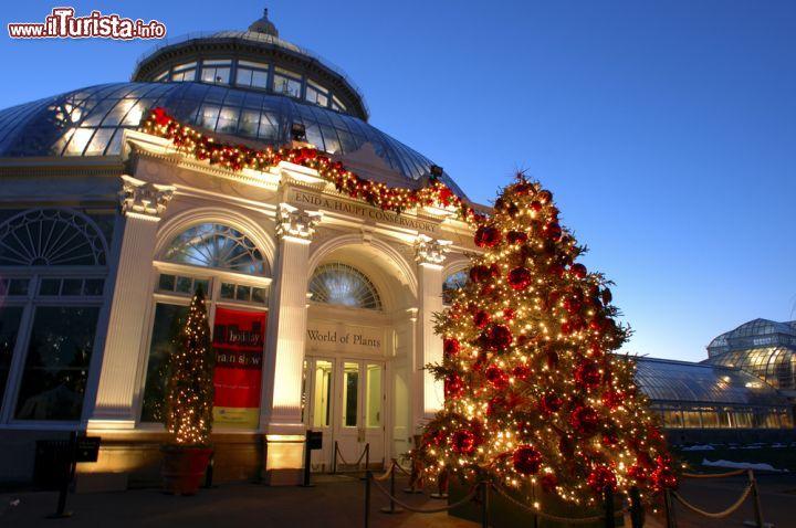 Festeggiamenti natalizi all 39 enid a haupt foto new york city new york botanical garden for Puglia garden city ny