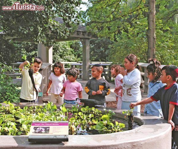 Bambini all 39 everett childrens adventure garden foto new york city new york botanical garden for Puglia garden city ny
