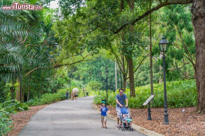 Singapore botanic gardens aperti tutto l 39 anno foto for Giardini fioriti tutto l anno