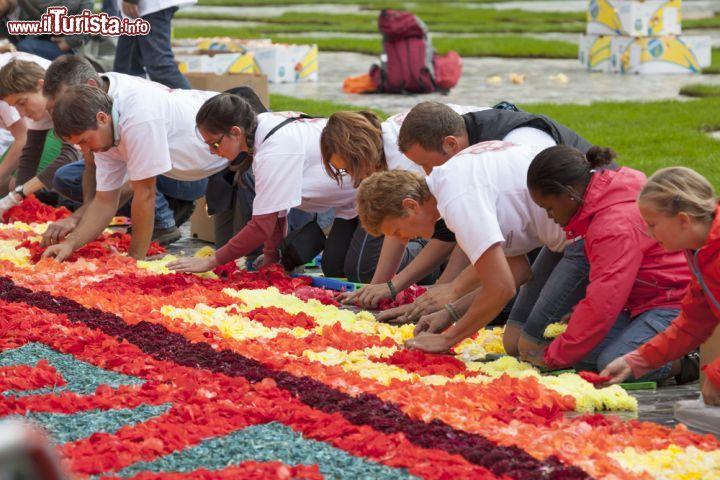 Tappeto Floreale Bruxelles : Fiorisca il festival del tappeto del belgio in grand place di