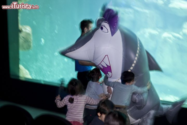 Immagine La mascotte di CineAqua, l'Aquarium de Paris