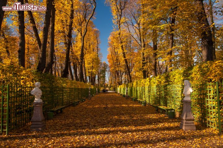 I colori dell 39 autunno nel giardino d 39 estate foto san pietroburgo giardino e palazzo d 39 estate - Il giardino d estate ...