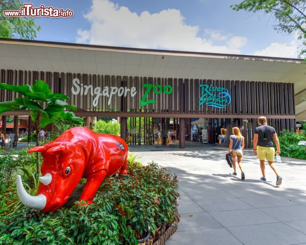 Cosa vedere e cosa visitare Singapore Zoo