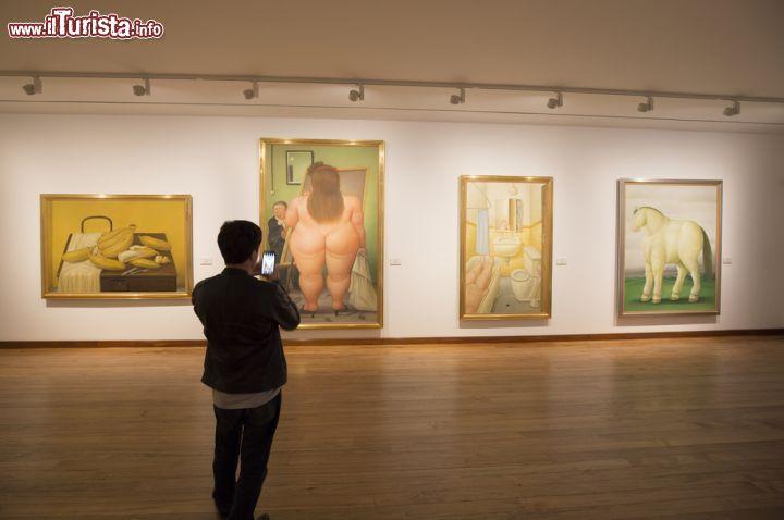 Cosa vedere e cosa visitare Museo Botero