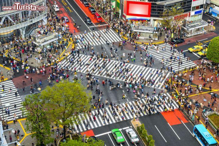 Cosa vedere e cosa visitare Shibuya