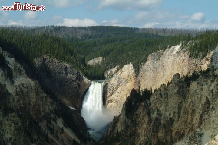 Le Lower Falls di Yellowstone, Wyoming. Il fiume Yellowstone ha scavato un impressionante canyon. Credit: Fred Pflughoft
