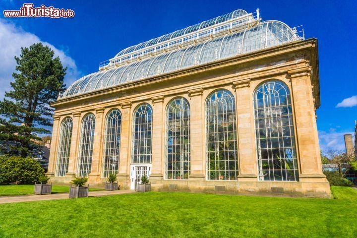 Cosa vedere e cosa visitare Royal Botanic Garden