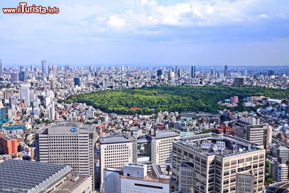 Cosa vedere e cosa visitare Yoyogi Park