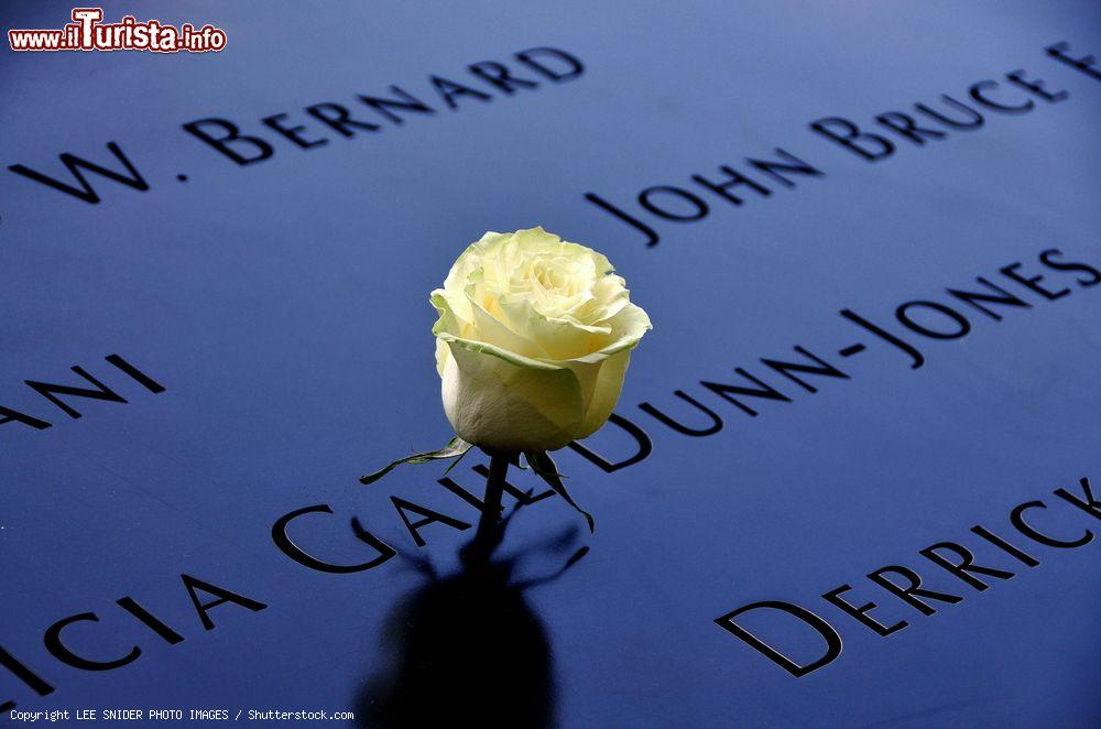 Immagine Una rosa tra i nomi delle vittime dell'attentato dell 11 settembre 2001 a New York City - © LEE SNIDER PHOTO IMAGES / Shutterstock.com