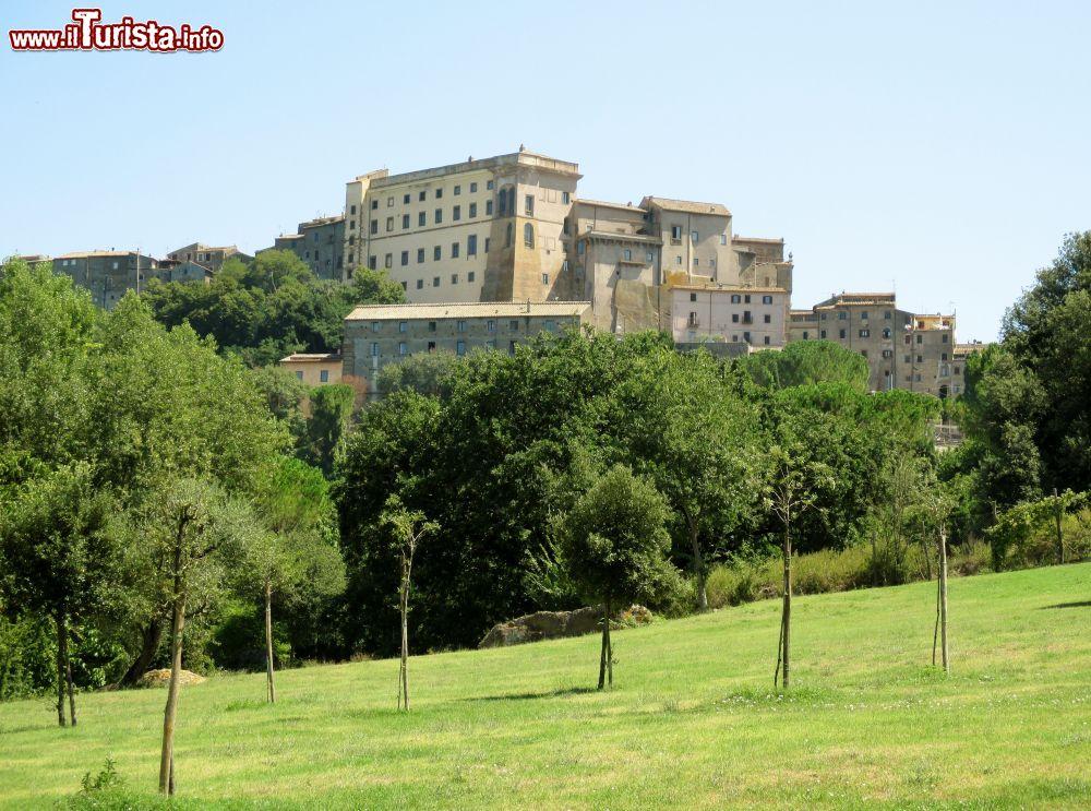 Cosa vedere e cosa visitare Palazzo Orsini
