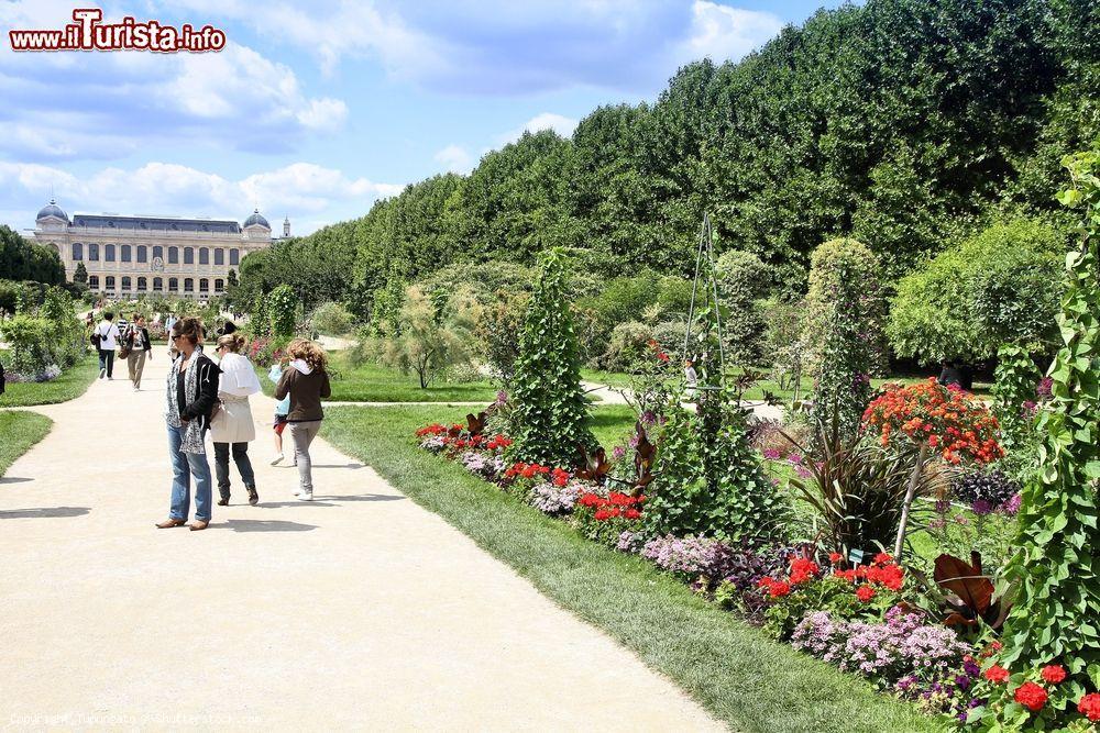 Cosa vedere e cosa visitare Jardin des Plantes