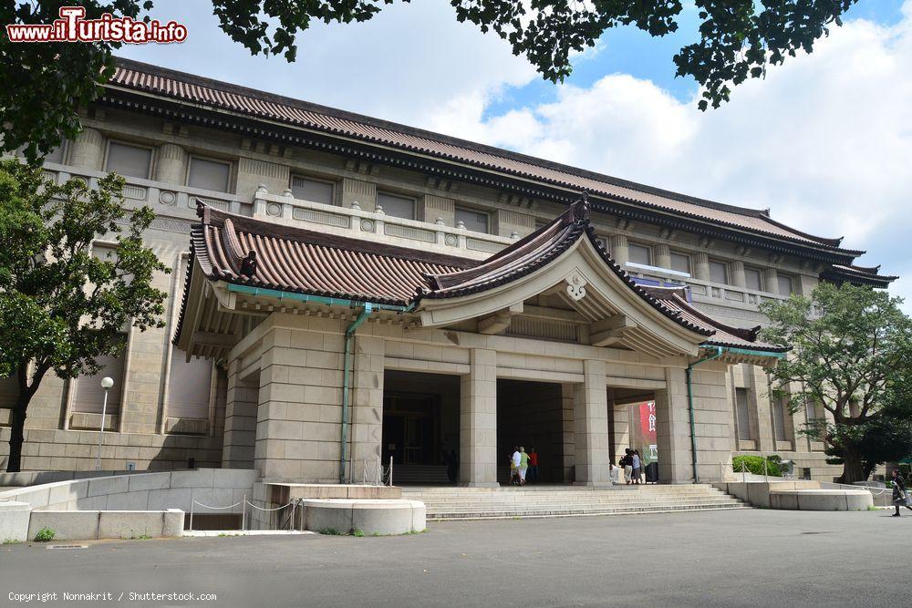 Cosa vedere e cosa visitare Museo Nazionale