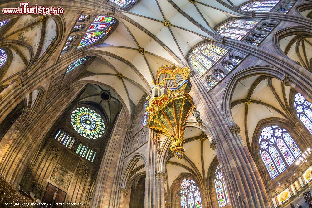 le altissime volte del soffitto della cattedrale