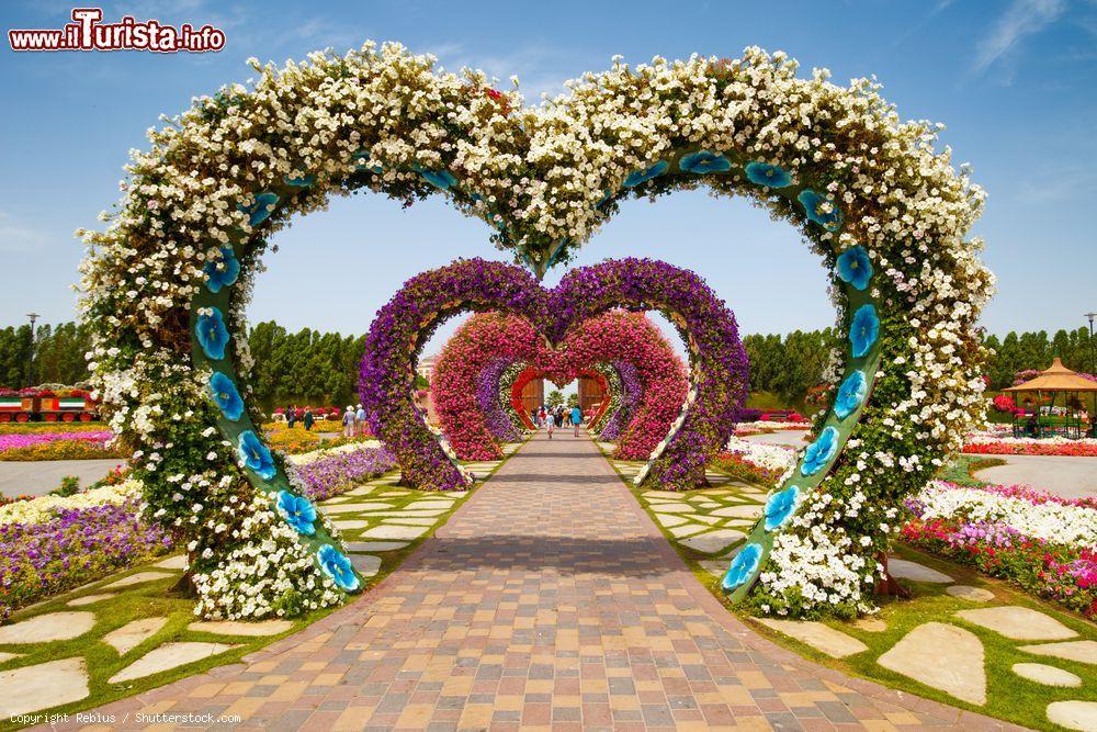 Cosa vedere e cosa visitare Miracle Garden