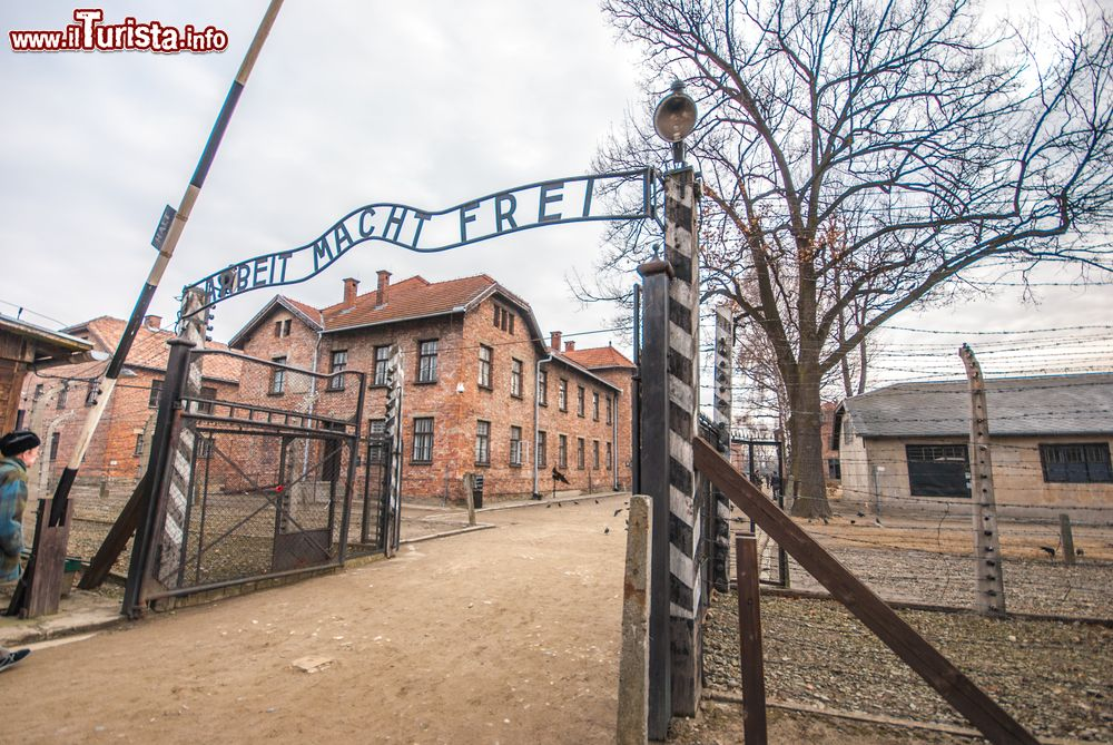 Cosa vedere e cosa visitare Auschwitz - Birkenau