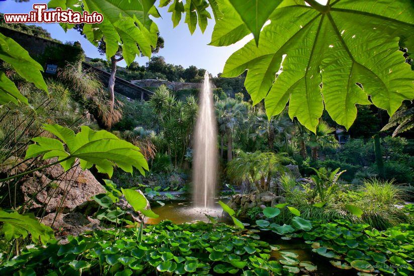 Cosa vedere e cosa visitare Giardini la Mortella