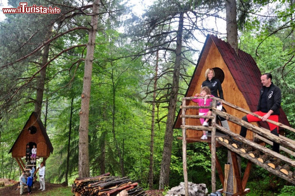 Cosa vedere e cosa visitare Tree Village