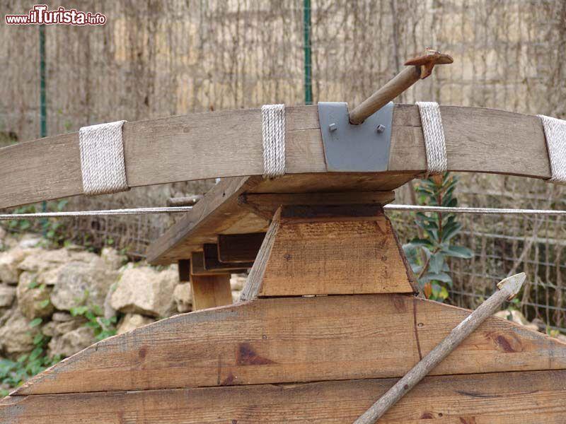 Cosa vedere e cosa visitare Tecnoparco Archimede