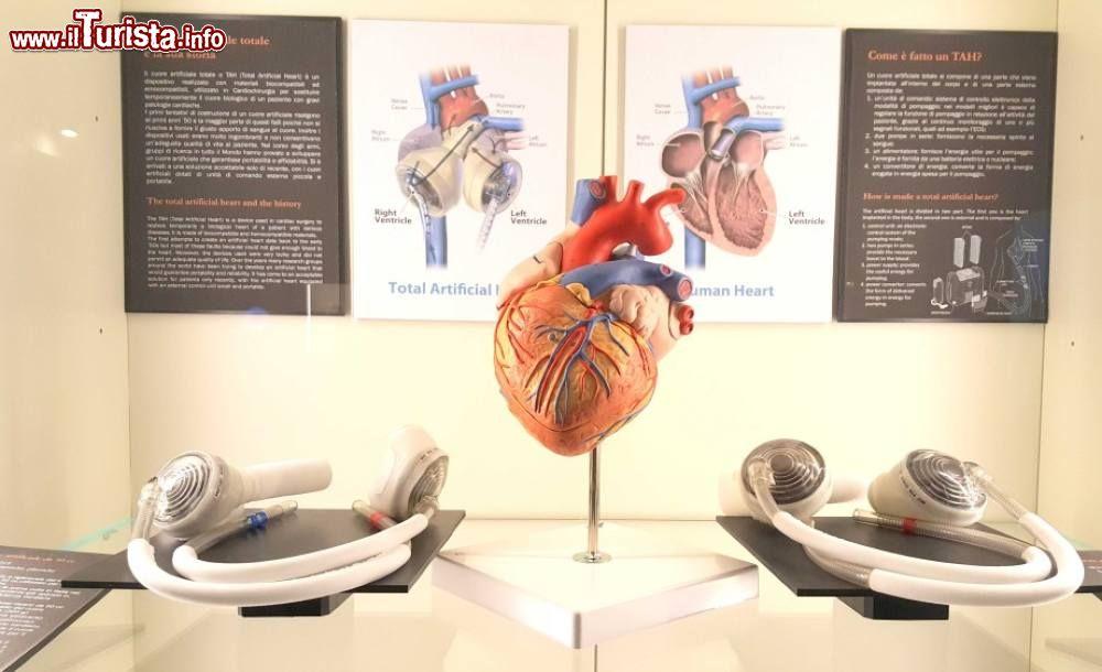 Cosa vedere e cosa visitare MUSME - Museo di Storia della Medicina