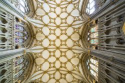 Il soffitto e le vetrate della Cattedrale di York (Cathedral and Metropolitical Church of St.Peter) - © Cynthia Liang / Shutterstock.com
