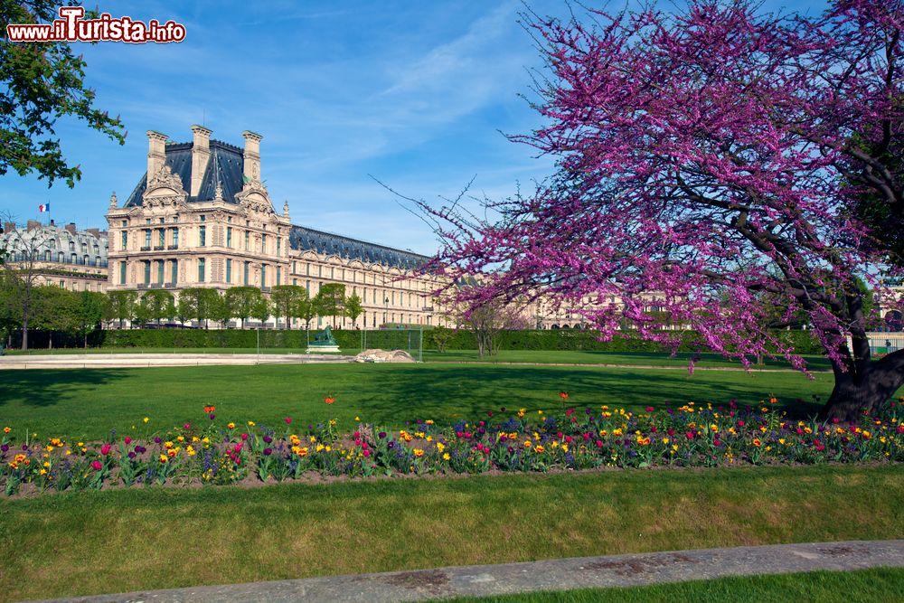 Cosa vedere e cosa visitare Giardino delle Tuileries