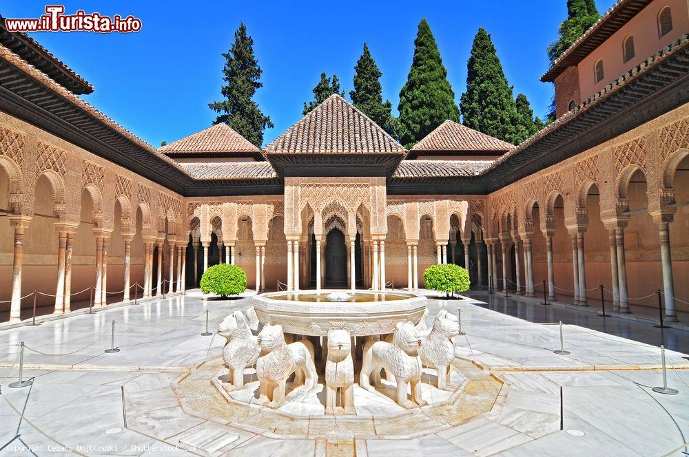 Le foto di cosa vedere e visitare a Granada