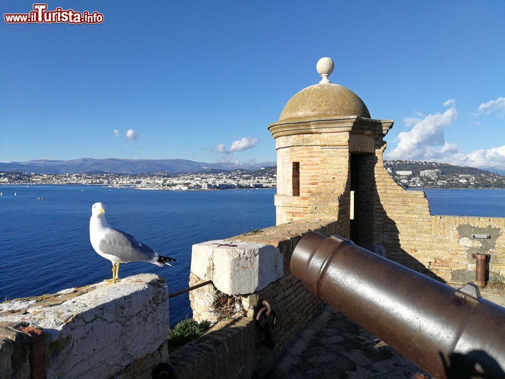 Cosa vedere e cosa visitare Isola di Santa Margherita