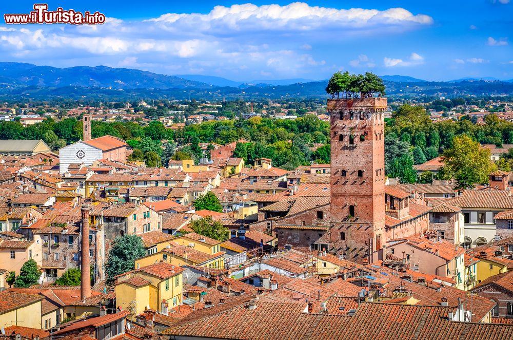 Cosa vedere e cosa visitare Torre Guinigi