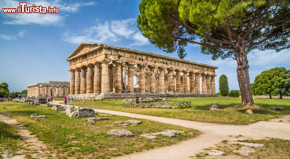 Cosa vedere e cosa visitare Sito Archeologico di Paestum