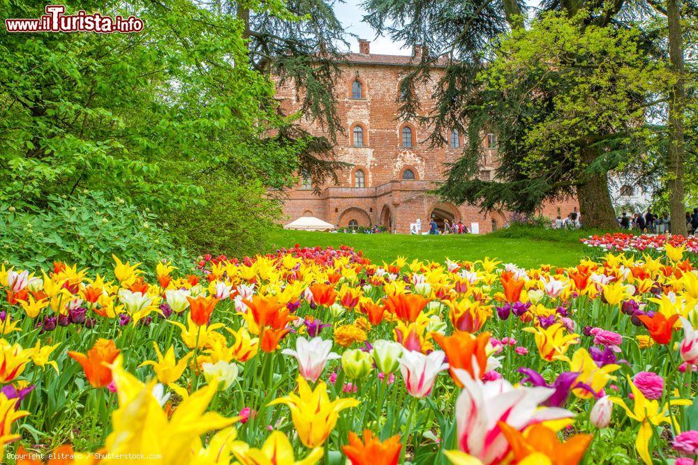 Cosa vedere e cosa visitare Castello