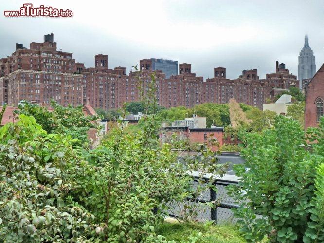Da non perdere una passeggiata ad high line una ferrovia for Da non perdere a new york