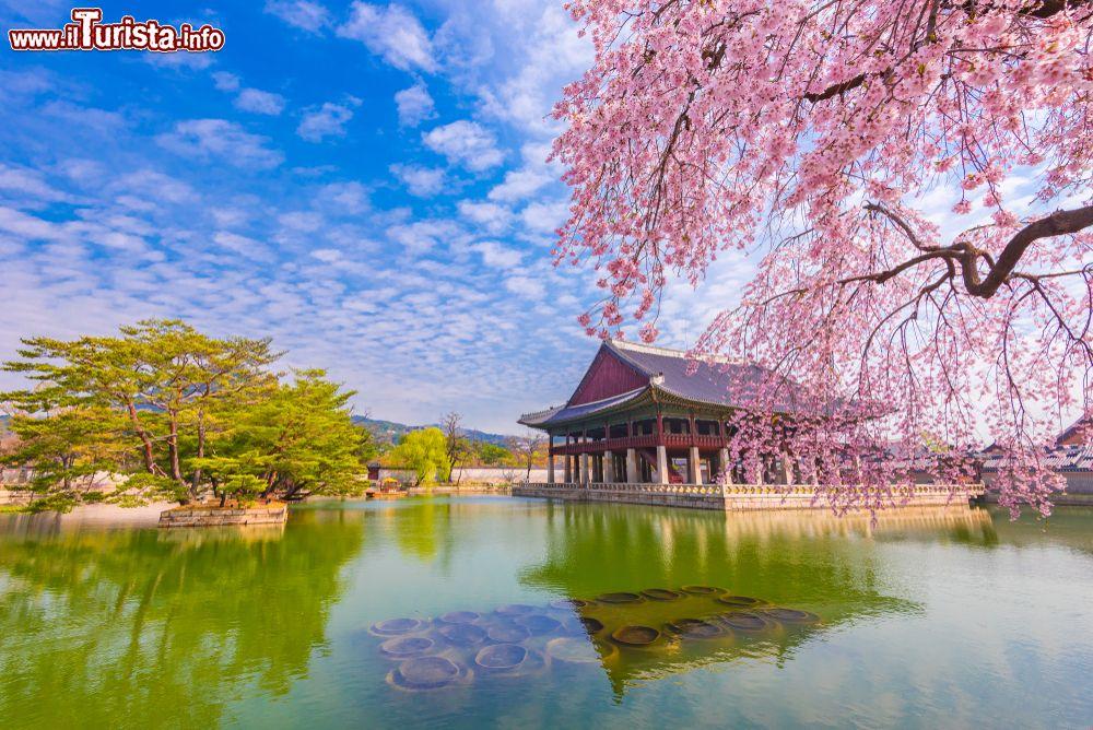 Cosa vedere e cosa visitare Gyeongbokgung Palace