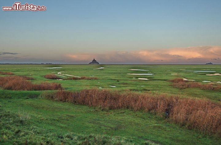 Mont saint michel appare all'alba