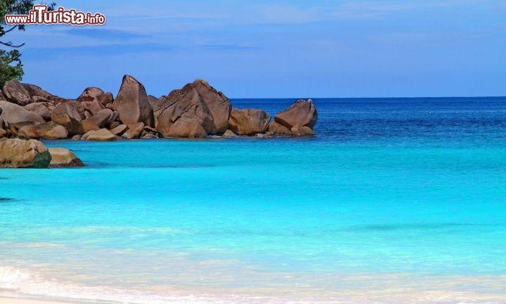 Le seychelles un paradiso in terra copyright - Foto di animali dell oceano ...
