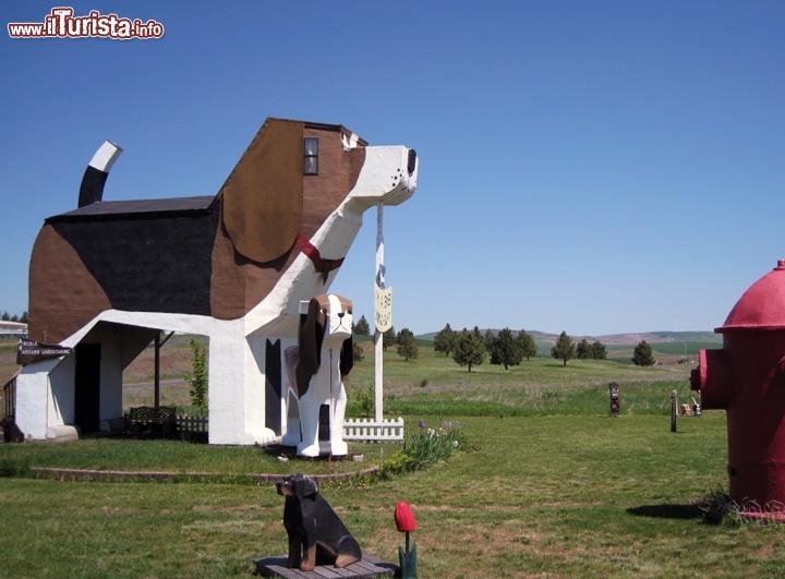 Dog Bark Park Inn, lalbergo a forma di Beagle Stati Uniti - adorate ...