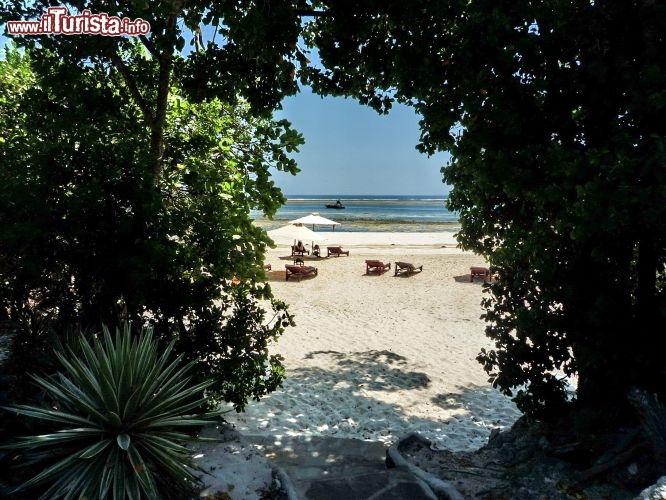 Le foto di cosa vedere e visitare a Chale Island