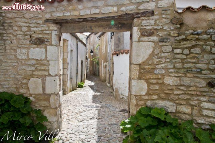 Le foto di cosa vedere e visitare a Poitou-Charentes