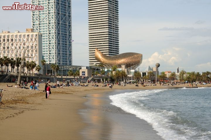 Immagine Peix d Or Frank O Gehry pesce d oro barceloneta barcellona