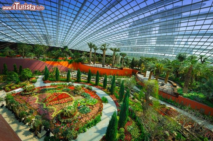 Immagine Flower Dome, la serra di Gardens by the Bay a Singapore